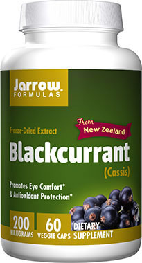 Фото #1: Blackcurrant Freeze-Dried Extract