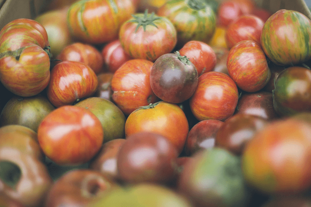 What's in Season for Fall: Fruits and Veggies that You've Gotta Buy
